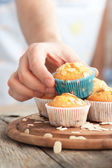 Leckere muffins — Stockfoto