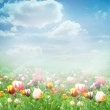 Easter Spring background — Stock Photo