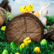 Easter hunt flyer or poster with copyspace — Stock Photo