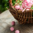 Easter concept - Stock Photo