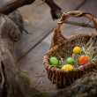 Royalty-Free Stock Photo: Easter concept