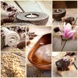 Spa collage with magnolia flower - Stock Photo