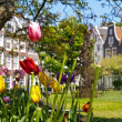 Tulips in the Begijnhof Court in Amsterdam - Stock Photo