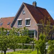 Scenics Cottages in Marken, Netherlands — Stock Photo #9043747