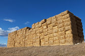 Large pile of hay bales — Stock Photo