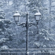 Old Street Lamp in a Snowy Day - Stock Photo