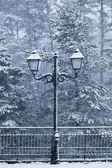Old Street Lamp in a Snowy Day — Stock Photo