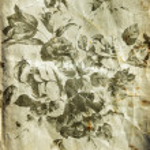 Decorative retro floral background — Stock Photo #8690524