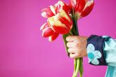 Beautiful bouquet of tulips — Stock Photo