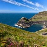 Coastline at Cornish coast near Boscastle, Cornwall, England — Stock Photo #10732711
