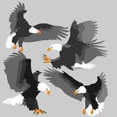 Eagles — Stock Vector
