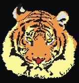 The big tiger — Stock Vector