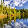 Forest and sky reflecting in lake - Stock Photo