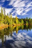 Céu refletindo no lago e floresta — Foto Stock
