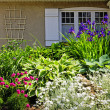 Residential garden landscaping — Stock Photo #8943811