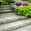 Stone stairs landscaping — Stock Photo #8943834