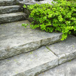 Stone stairs landscaping — Stockfoto