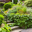Natural stone garden stairs - ストック写真