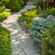Stock Photo: Garden path with stone landscaping