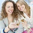 Women toasting with white wine - Stock Photo