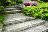 Stone stairs landscaping — Photo