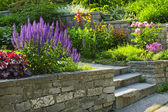 Garden with stone landscaping — Stockfoto