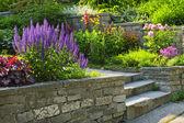 Jardin avec pierre aménagement paysager — Photo
