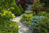 Trayectoria del jardín con piedra paisajismo — Foto de Stock