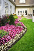 Färgstark blomma trädgård — Stockfoto