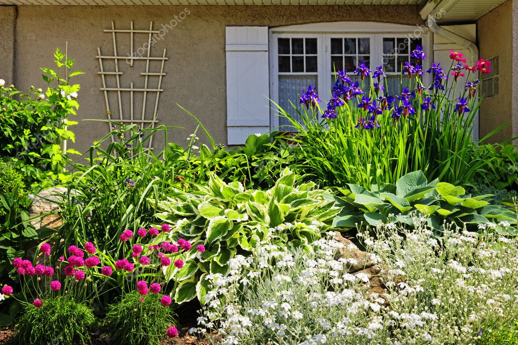 Residential landscaped garden with flowers and plants — Stock Photo #8943811