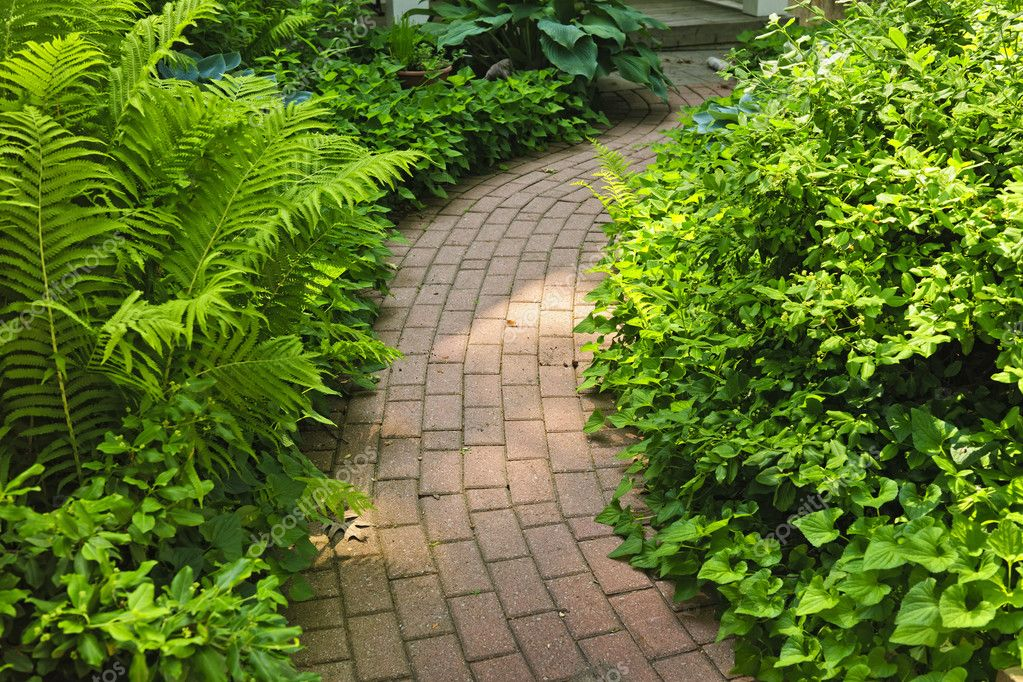 Paved brick path in lush green summer garden — Stock Photo #8943820