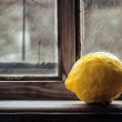 Lemon on window — Stock Photo #10123998