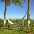 Hammock and palm trees on a brazilian beach house — Stock Photo