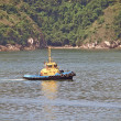 Tug boat on the sea and mount backwards — Stock Photo