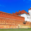 Mir Castle Complex — Stock Photo #9639799