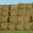 Straw related — Stock Photo