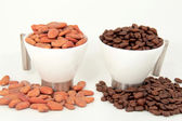 Coffee and cocoa beans — Stock Photo