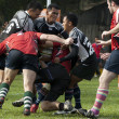 Rugby Players in Action — Stock Photo #8785038