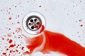 кровавый раковина фон — Стоковое фото