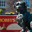 Greyfriar's Bobby — Stock Photo #10505224