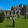 Stock Photo: Melrose Abbey
