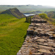 Hadrian's wall — Stock Photo #10505872
