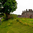 caerlaverock castle — Stock Photo #10653741