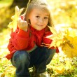 Cute little girl is playing with leaves in park — Stock Photo #9426079