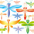 Set of colorful dragonflies — Stock Vector