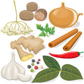 Spices and vegetables for cooking — Stock Vector