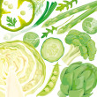 Mix of green vegetables — Stock Vector
