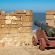 Old cannon in the fort — Stock Photo