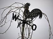 Weathercock-cirrus — Stock Photo
