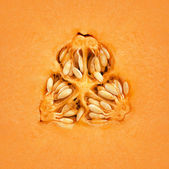 Cantaloupe Melon Inside — Stock Photo